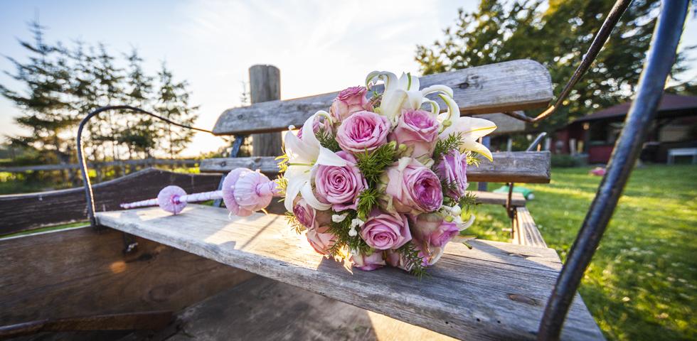 Kollektiv Blickwinkel - Hochzeitsfotografen aus Rostock-Hochzeitsfotografie-Bad-Doberan-2012-001